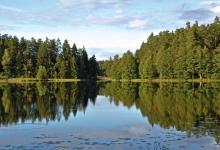 Jezioro Krzywe, fot. J. Koniecko