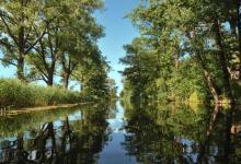 Widok na Kanał Augustowski ze Śluzy Borki-Białobrzegi,w tafli wody widoczne są odbicia zielonych drzew i krzewów oraz błękitnego nieba, fot. J. Koniecko