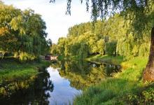 Widok na Kanał Augustowski a w oddali Śluza Białobrzegi, w wodzie odbijają się zielone konary drzew i błękitne niebo, fot. J. Koniecko