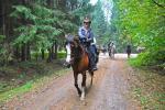 Konie, fot. J. Koniecko